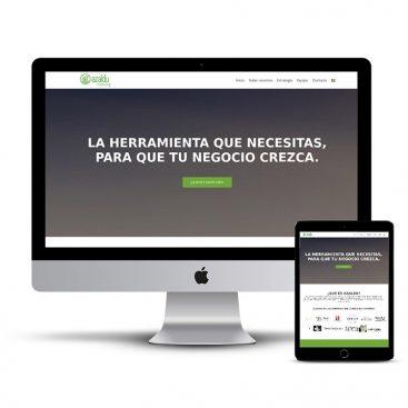 Diseño Página web Azaldu