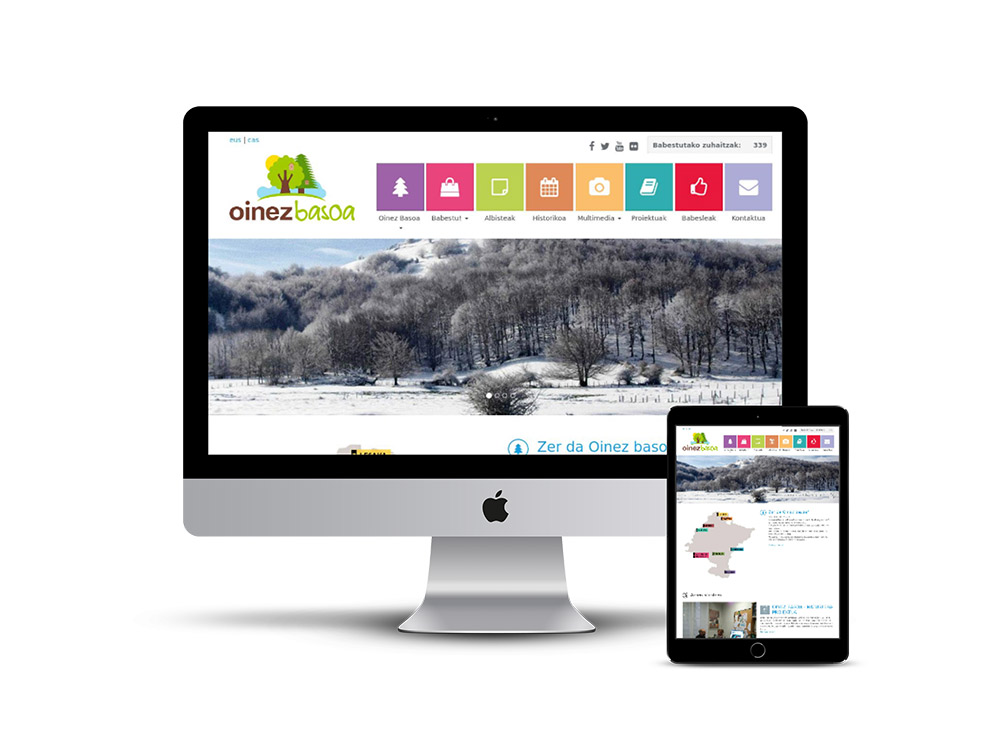 Diseño Página web Nafarroa Oinez basoa