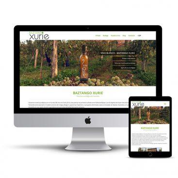 Diseño Página web Vino blanco Baztan