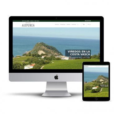 Diseño Página web Txakoli Aizpurua