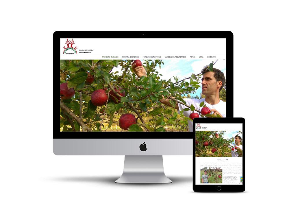 Diseño Página web Zubialde patxakak
